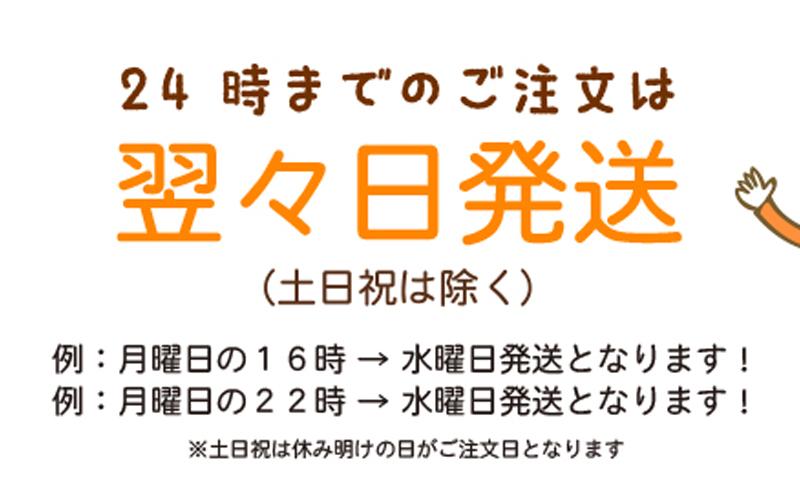 3営業日で発送!